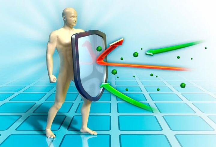 Специалисты назвали предположительные сроки появления коллективного иммунитета от коронавируса у россиян
