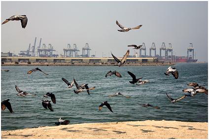 Был слышен взрыв танкера около берегов Саудовской Аравии