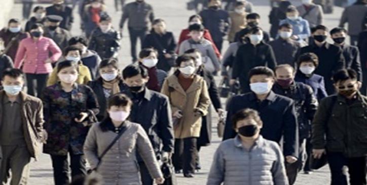 Северной Кореей была закуплена российская вакцина от коронавируса