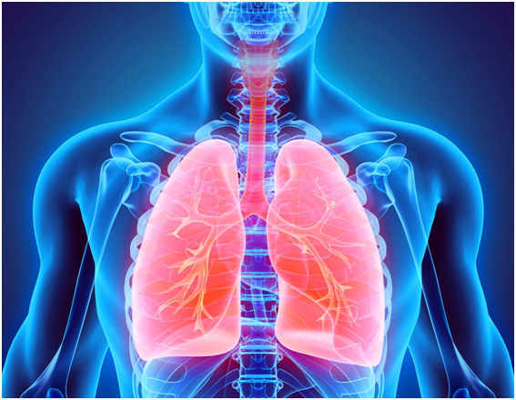 Ученый объяснил защищенность от коронавируса людей с астмой