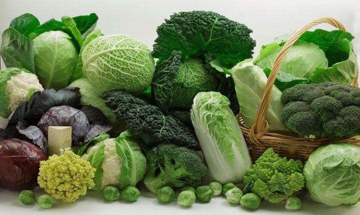 Ученые назвали продукты, которые влияют на долголетие