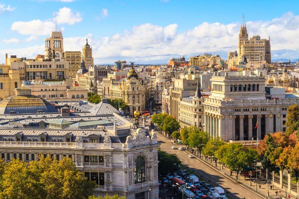 В Мадриде будут «клонировать» деревья, которые были уничтожены снежным штормом
