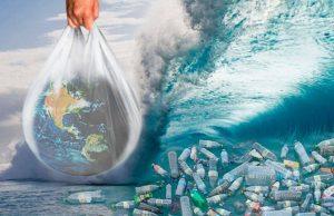 Пластик, полностью разлагающийся за 3 месяца