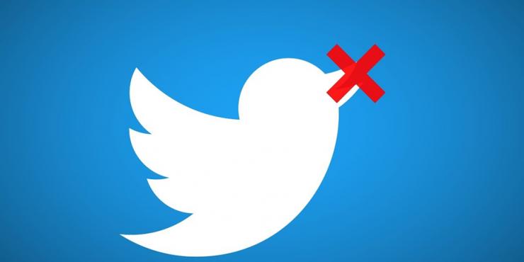 Мишулина заявляет о возможности полной блокировки социальной сети Twitter в России
