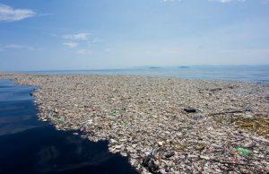 Из МКС виден плавающий в океане остров из мусора