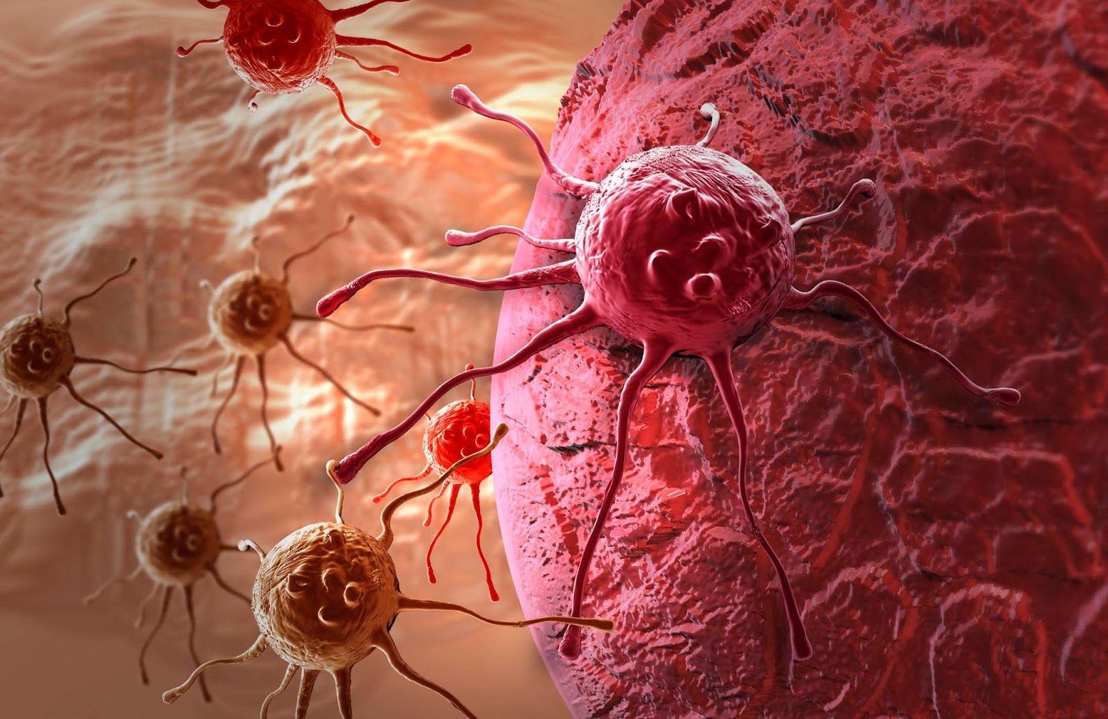 Лечение онкологии станет более индивидуальным