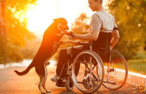 Пенсия инвалидам 2 группы