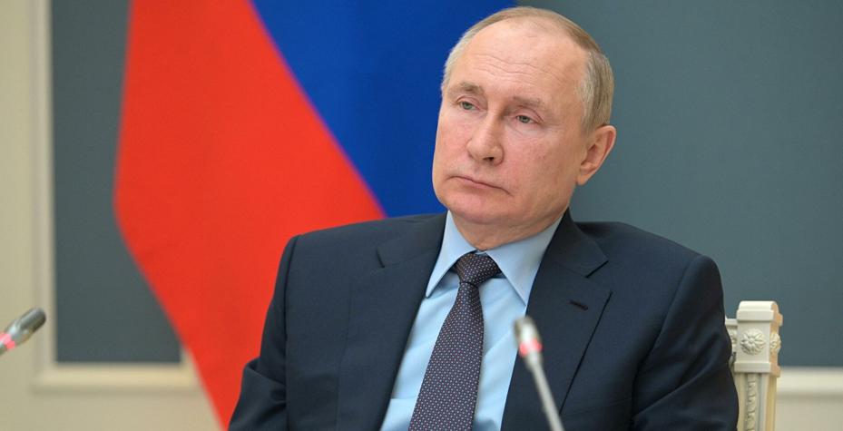 Путин поспособствовал увеличению популярности собак акита-ину в России
