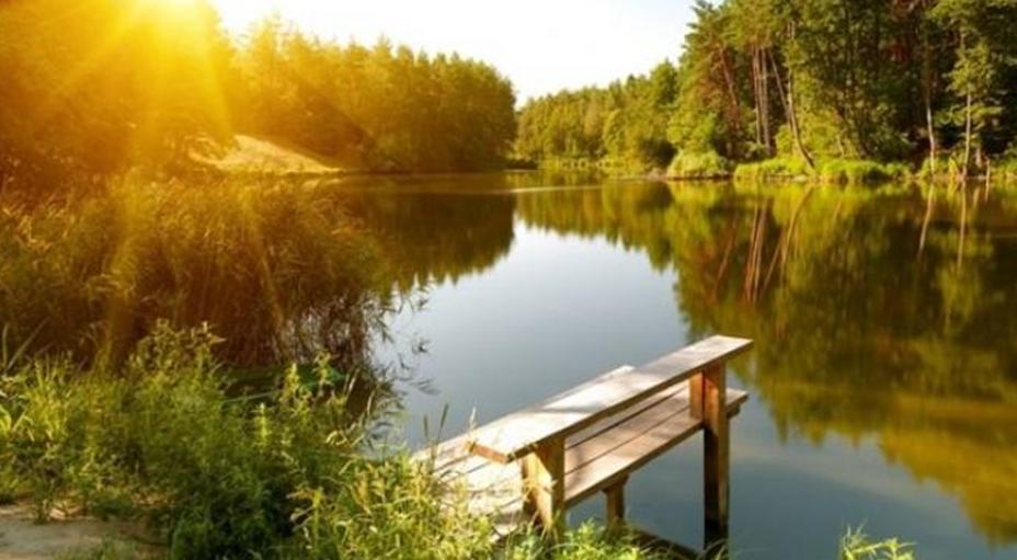 В Гидрометцентре спрогнозировали сроки наступления летней погоды в Москве