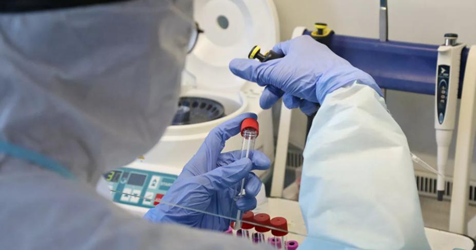 В Турции допустили отмену требования ПЦР-тестов на COVID-19 у россиян