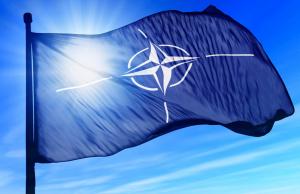 НАТО может предоставить Украине новый пакет Целей партнерства до 2025 года