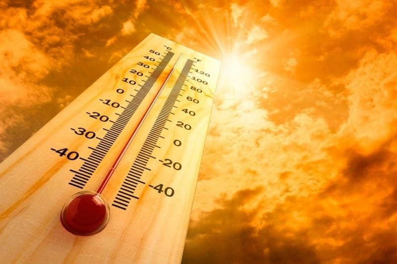 В Санкт-Петербурге зафиксирована аномальная жара