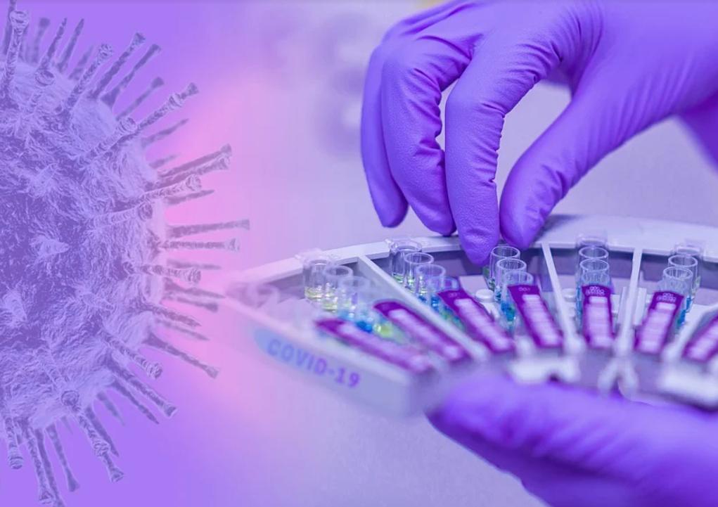 В России подтвердили наличие штамма коронавируса, распространенного в Бразилии