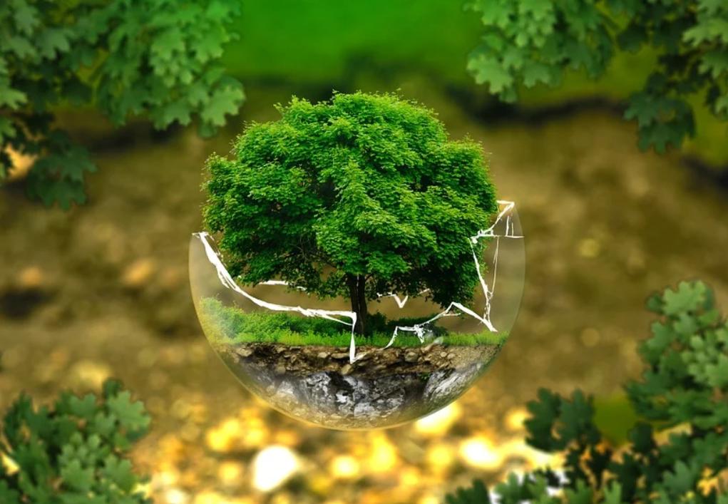 Австрийцы ожидают от правительства введения экологических налогов