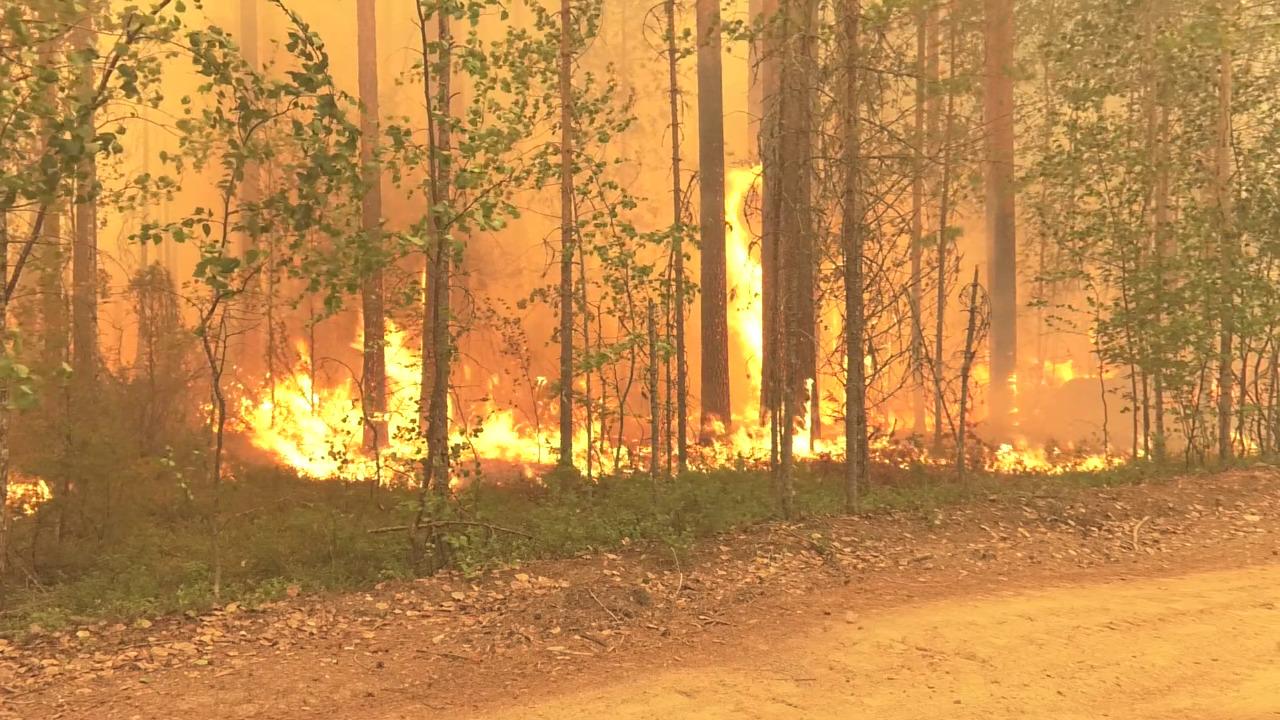 В части регионов России продолжается борьба с лесными пожарами