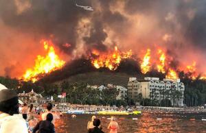 Террористическая организация заявила о причастности к лесным пожарам в Турции