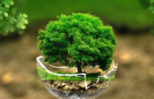 Украина полностью исчерпала годовой запас природных ресурсов