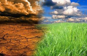 ООН: к 2040 году на планете станет больше экологических катастроф