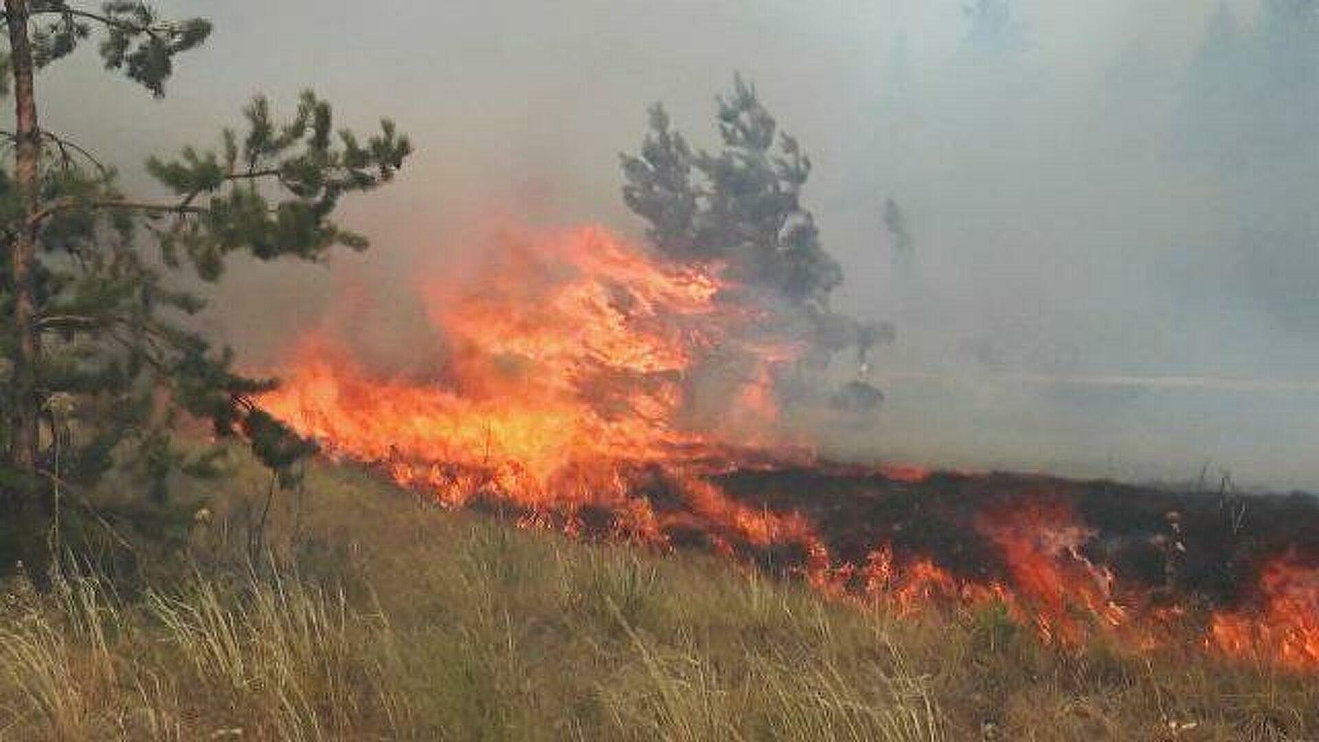 Ситуацию с лесными пожарами в Якутии удалось стабилизировать