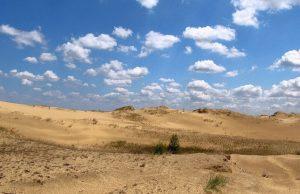 Директор НАНЦ Украины заявил о скором превращении украинской территории в пустыню