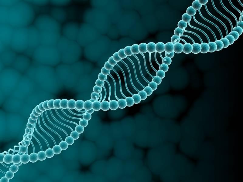 В большинстве случаев гены определяют уровень тяжести протекания и риск летальности от COVID-19 – биолог