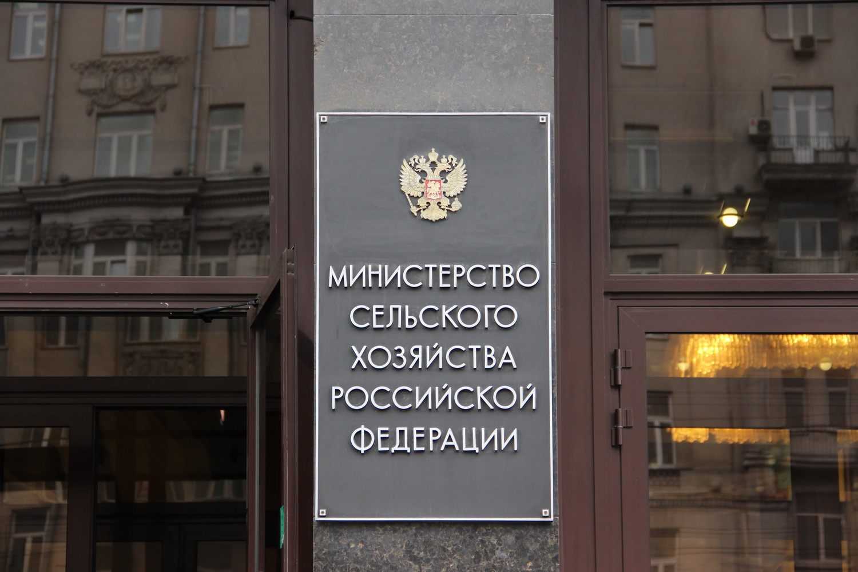 Отсрочку реформы утилизации отходов поддержали два министерства РФ
