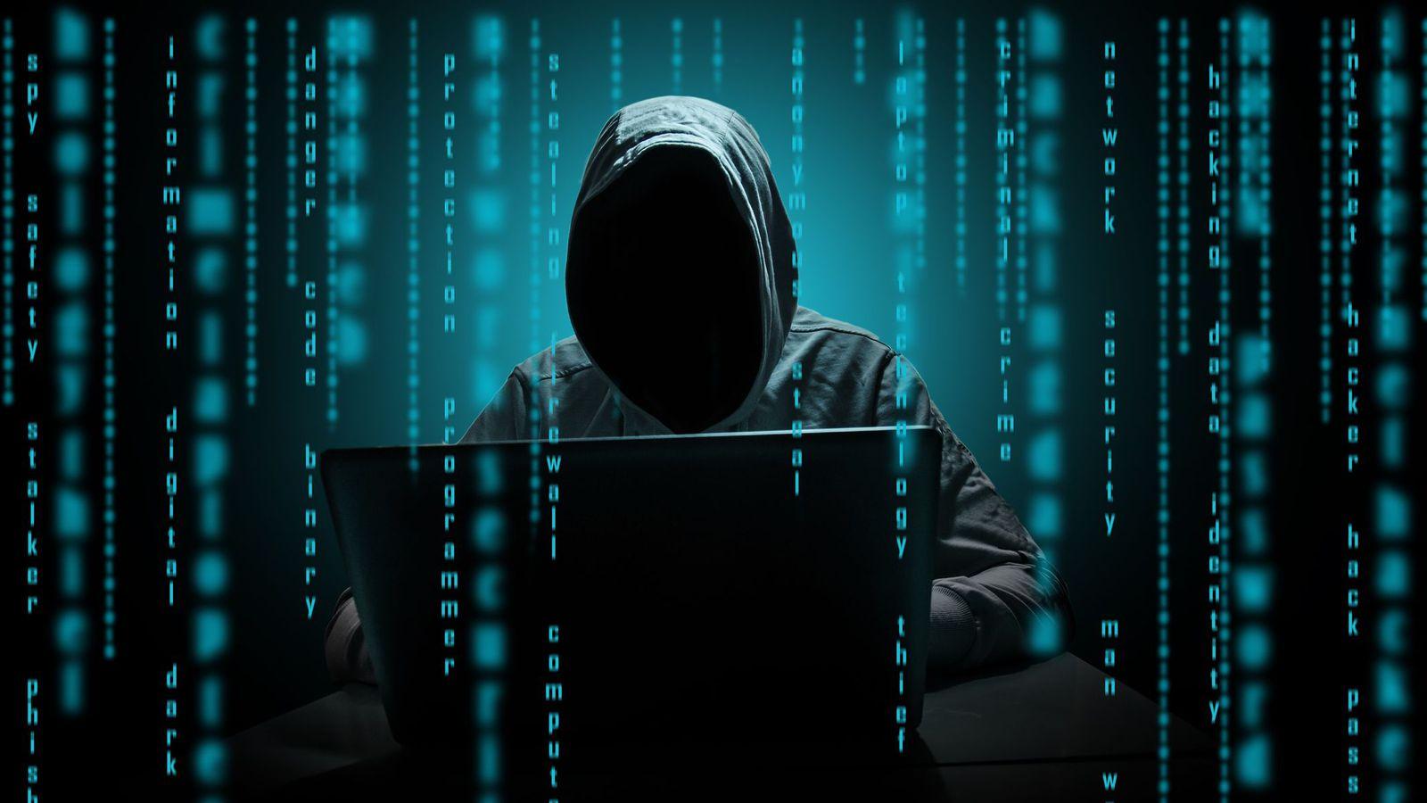 В России хотят создать сервис для быстрого поиска киберпреступников