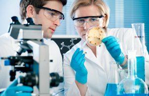 Группа ученых определила длительность естественного иммунитета после COVID-19